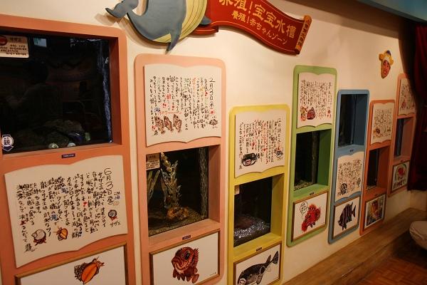 ヨコハマおもしろ水族館/さかなの赤ちゃん水族館